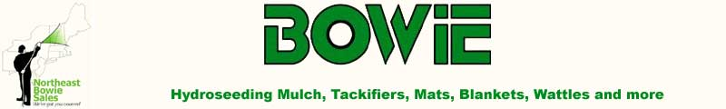 North East Bowie Sales Banner Ad